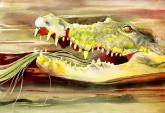 Crocodile Crunch by Lola Juris