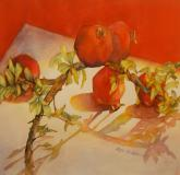 Honorable Mention  - Red Hot Pomegranates by Rikki Reinholz