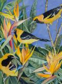 Birds of a Feather:Hooded Orioles and Bird of Paradise by Carol Roberts