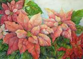 Pink Perfection Poinsettias by Sue Blass