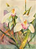 Cymbidium Delight II by Sandra Seckington