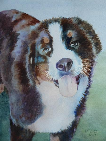 Best of Miniatures - Bernese Mountain Dog by Keming Chen