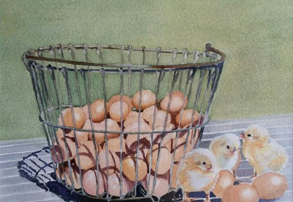 Not All Eggs in One Basket by Lois Athearn