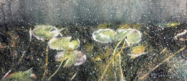 Waterlilies by Rebecca McCullough