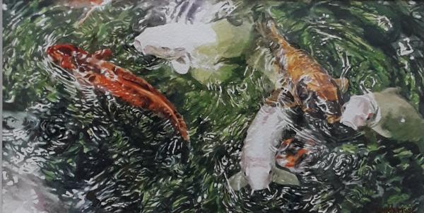 Koi Cluster by Christine Mose