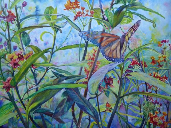Monarch with Milkweeds by Keming Chen