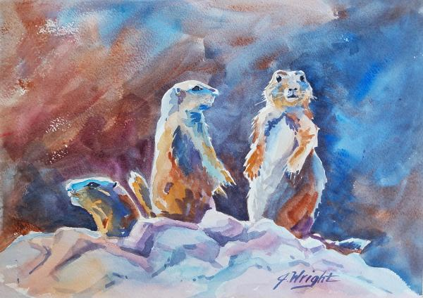 Prairie Dogs on Alert by Jami Wright