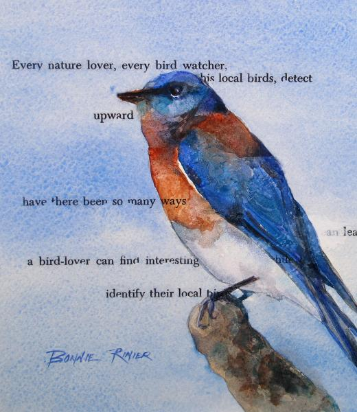 The Bluebird Story by Bonnie Rinier