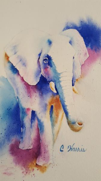 Elephant Blues by Carol Harris
