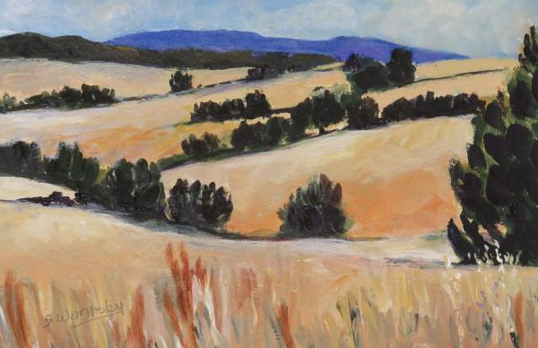 Julian Summer Hills by Susan Wormsley