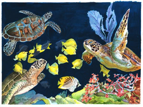 Turtle Cleaning Station 2 by Carol Roberts