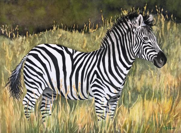 Own Your Stripes by Maureen Price