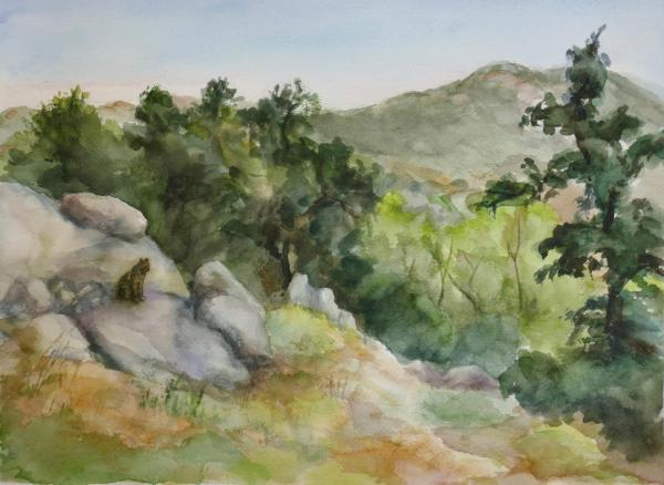 Wildcat Canyon by Christa Thurber