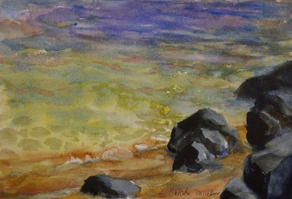 Rocky Shore by Christa Thurber
