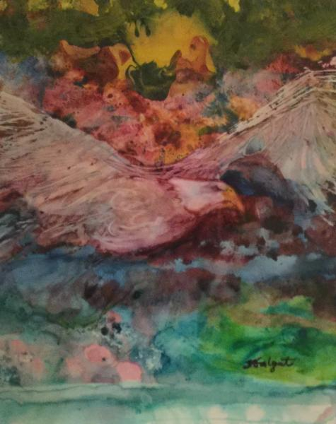 Soar Like An Eagle by Tova Galgut