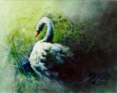 """Blue Swan"" by Ann Slater"