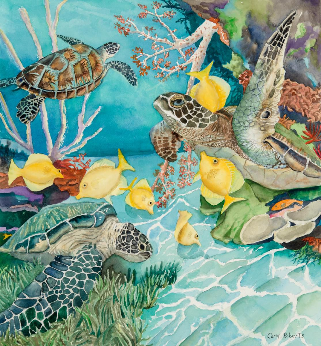 Turtle Cleaning Station by Carol Robers