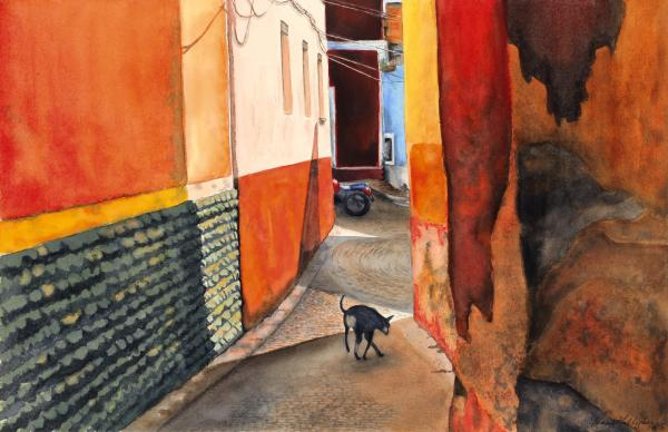 Calle de Perro by Renee Galligher