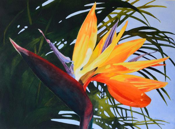 Bird of Paradise by Elaine Jary