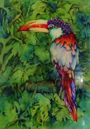 Macaw by Ann Slater