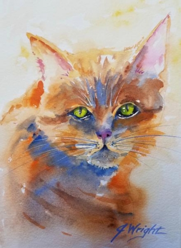 Tabby With Green Eyes by Jami Wright