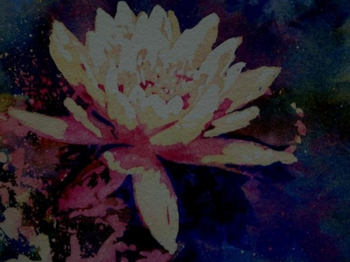 Water Lily by Ralph Kingery