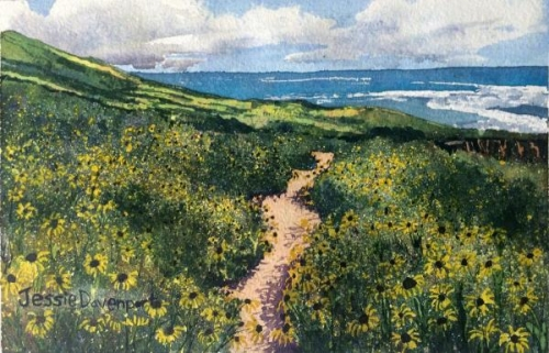 Point Loma Wildflowers by Jessie Davenport
