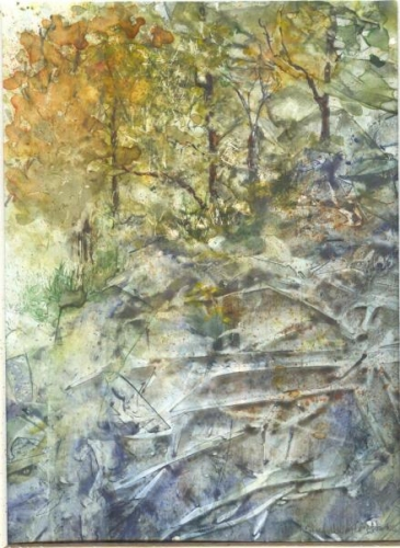 Rocky Forest Bank by Susan Weinberg-Harter