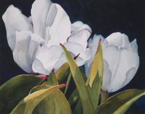 White Tulips by Linda Mullen
