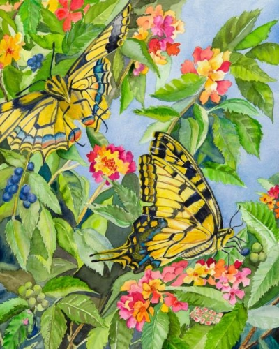 Eastern Swallowtails by Carol Roberts