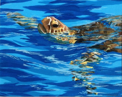 Tortue de Mer by Beverly Brady