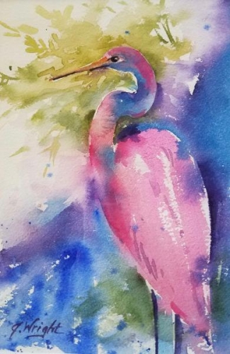 Pink Heron by Jami Wright