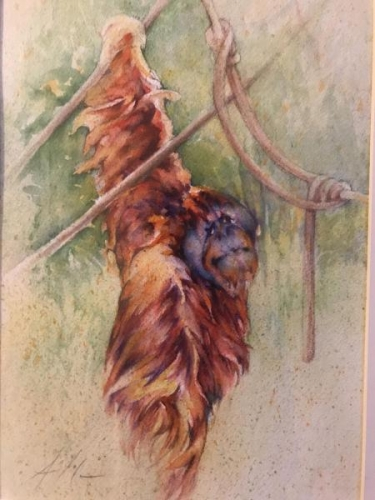 Just Hang'n Around by Ann Slater