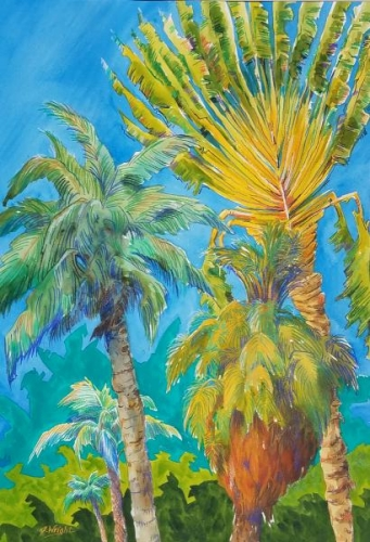 Banana Groves and Palms by Jami Wright