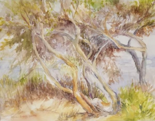 Honorable Mention,  - Trees by Lagoon by Karen Beall
