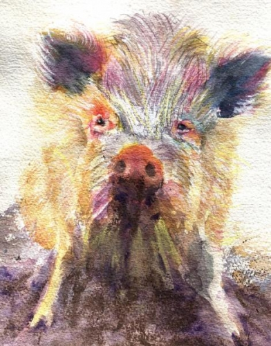 Oink! by Beverly Tuzin